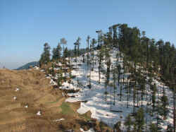 skiing slopes in Kufri