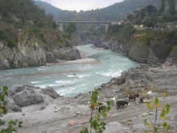 The Satluj river as it passes from tattapani near Shimla